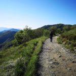Carrareccia dal colle di Praglia per il Monte Penello