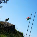 Aquila Reale e Bandiera italiana