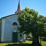 La cappella della Madonna della neve di Minceto con il tiglio secolare