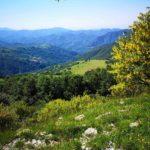 Panorama dal sentiero per l'Antola