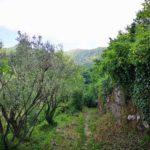 Sentiero da Cartagenova