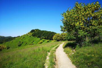 Sentiero per il Monte Antola