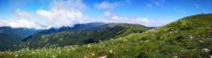 Prati fioriti al Monte Carmo di Carrega