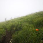 Nella nebbia più fitta al Monte Carmo di Carrega