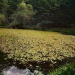 Il laghetto del Monte Penna