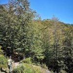 Camminando in vista del Monte Castello del Fante