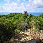 Scendendo alla torre di Punta Baffe