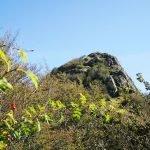 Il Monte Gifarco