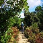 Tornando sul sentiero della costa di Punta Baffe