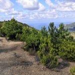 Sul panoramico sentiero di Punta Baffe