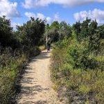 Sul sentiero di sabbia verso Punta Baffe