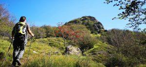 Al passo del Gifarco con vista sulla cupola rocciosa del monte