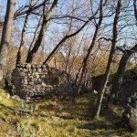 Ruderi nascosti nel bosco a Prato della Casa