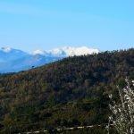 La vista del Saccarello dalla sterrata per Liverna