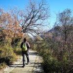 Acquedotto alle falde del Monte Pinasco