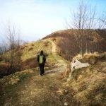 La mulattiera verso il Monte Proi