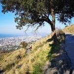 Sulla strada per il Monte Fasce