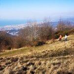 Sulla cresta tra il Monte Bastia e il Proi