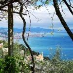 Vista su Sant'Eugenio e il golfo di Genova