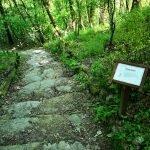 Il sentiero botanico di Ciaè