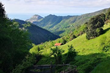Vista sul Monte Gazzo