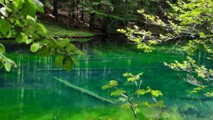 Lago degli Abeti - Claudia Fiori